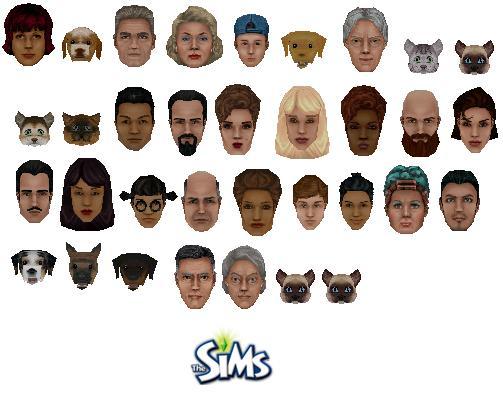 File:Sims of Sims 1.JPG