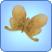 File:Zephyr Metalmark Butterfly.png