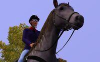 Eliza riding a horse
