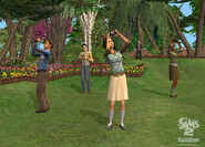 TS2FT Gallery 8