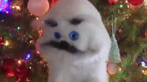 Finney Christmas