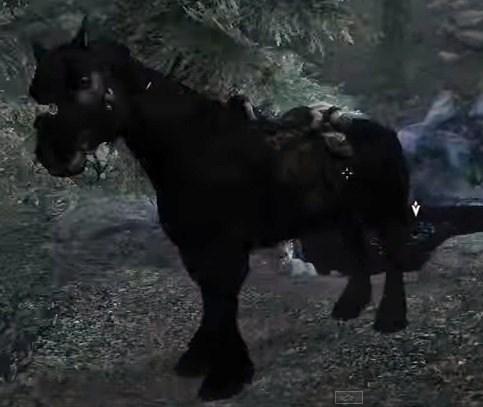File:Horse02.jpg