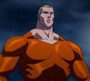 Aquaman Justice League The Flashpoint Paradox