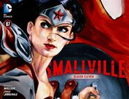 Smallville Warrior 4