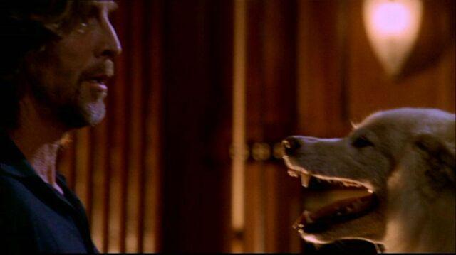 File:Smallville210 587.jpg
