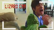 Lizard cameraduck