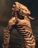 HeroStore-Striker-Bone-Normal