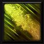 AbilityIcon-LeafBurst-Normal