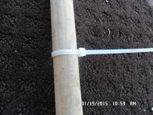 No. 1 multi-mini hoop rickf