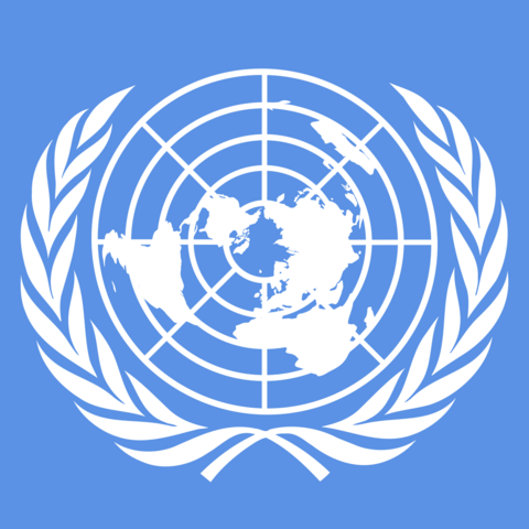 File:United-nations-UN-flag-picrure.png