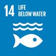 E SDG goals icons-individual-rgb-14
