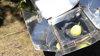 Breadfruit cooked in a solar cooker
