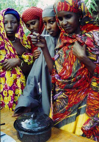 File:WAPI Dadaab.jpg