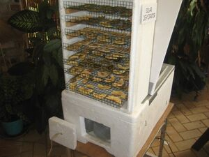 Solar dehydrator front, Sizzling Solar Systems, 11-13-12