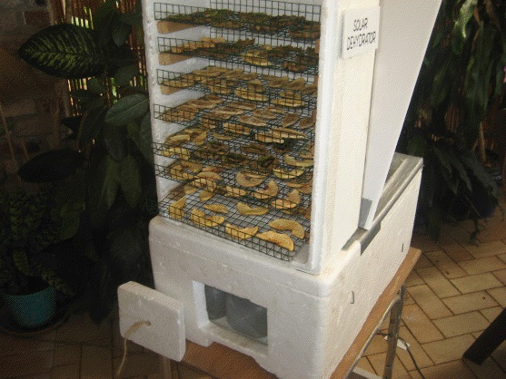 File:Solar dehydrator front, Sizzling Solar Systems, 11-13-12.jpg