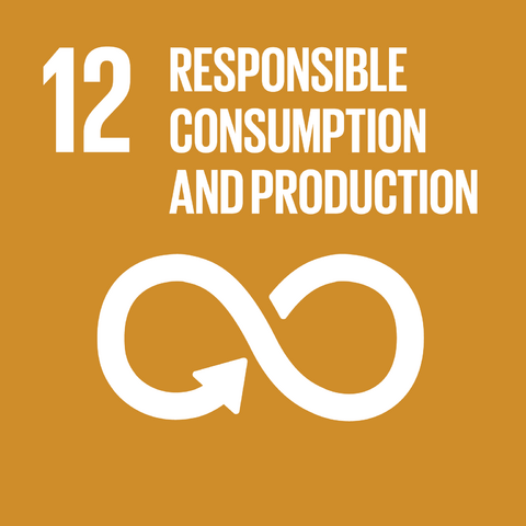 File:E SDG goals icons-individual-rgb-12.png
