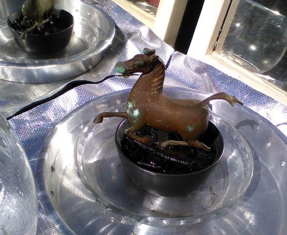 File:Flying horse 5.jpg