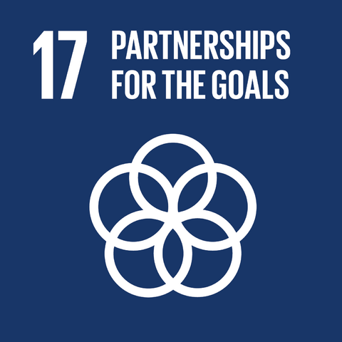 File:E SDG goals icons-individual-rgb-17.png