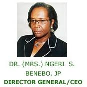 File:NESREA CEO.jpg