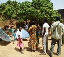 Energie Solaire au Burkina Faso : Actualité Energie