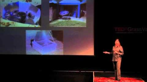 Harnessing the Sun to Improve Health and Environments Julie Greene at TEDxGrassValley