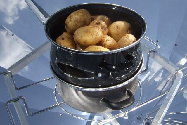 File:Kartoffeln im Biodünster3.JPG