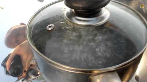 Hybrid solar gas stove