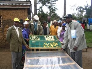 Energy Globe Award 2006 food drying