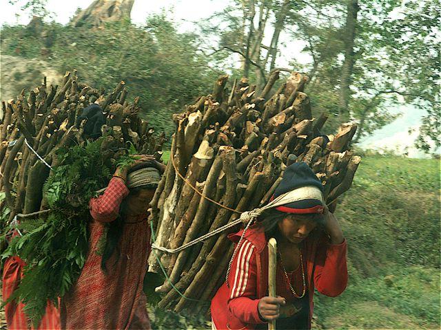 File:Nepal wood carrying - McArdle 2008.jpg