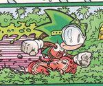 File:Eco Sonic.jpg