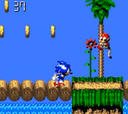 Green Hill Sonic Blast 3