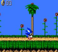 Green Hill Sonic Blast 6