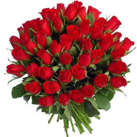 File:100-red-roses.jpg