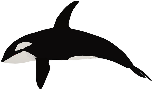 File:Orca generations model.png