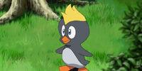Pecky (Sonic X)