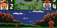 Sonic Drift/Beta elements