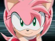 Amy137