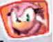 File:AmyRosedsicon.png