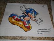 Somersaulting-Snowboardin'-Sonic 04