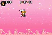 Sonic Advance 2 17