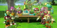 Sonic's birthday