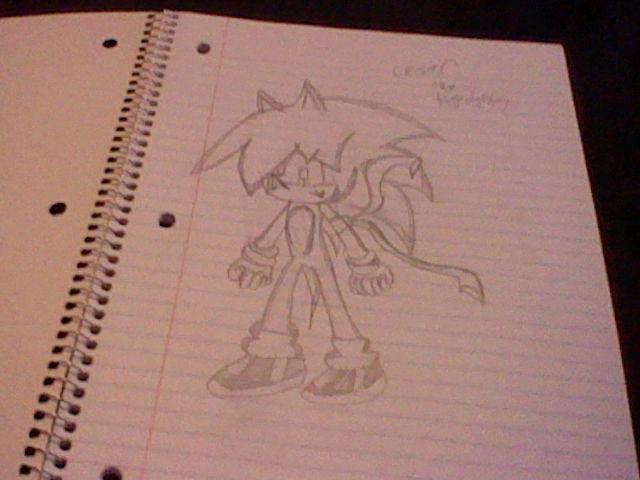 File:Cesar for cesarthehedgehog by shadow loves melissa-d4ywa46.jpg
