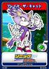 Sonic Rush 14 Blaze