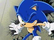 Sonic got hurt