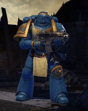 Armor Veteran