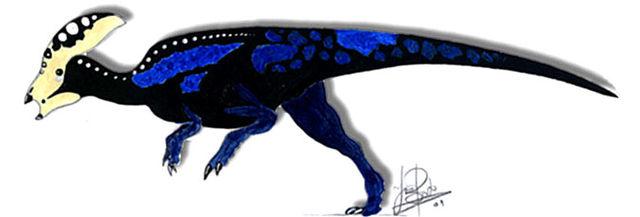 Parachlorosaurus viduatus-0