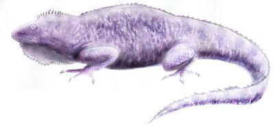 Polyglyphanodont2