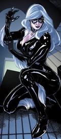 Black Cat Portal