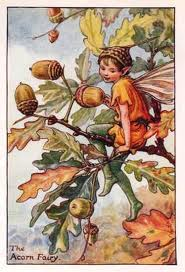 File:Acorn fairy.jpg