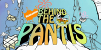 Behind the Pantis